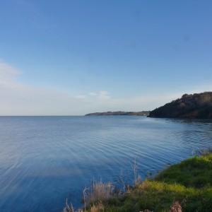 ©Réserve Naturelle de la Baie de Saint-Brieuc